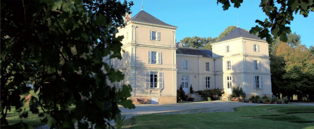 Château de Fesle